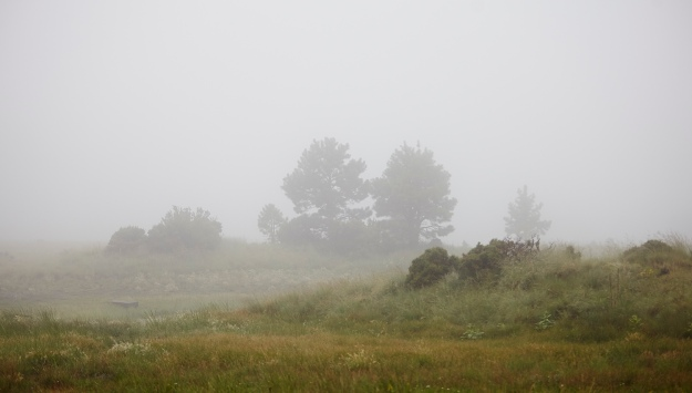 Clouds_MG_2153